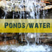 Water Services Ponds-waterfeatures-Nashville-75